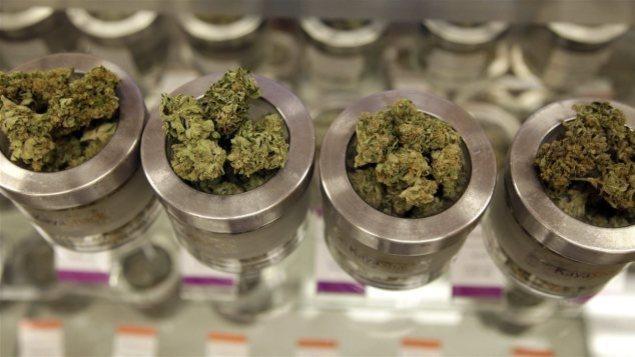منتجات الماريجوانا معروضة للبيع/ Associated Press/Gosia Wozniacka