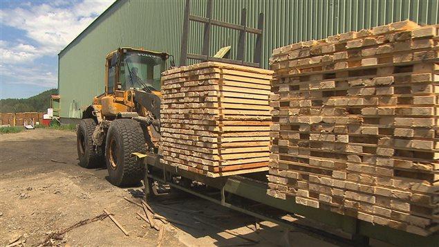مصنع لانتاج خشب البناء في كندا ( ارشيف) Radio-Canada