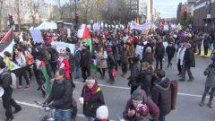 مظاهرة ضدّ العنف في مونتريال في 12-11-2017/ Radio-Canada