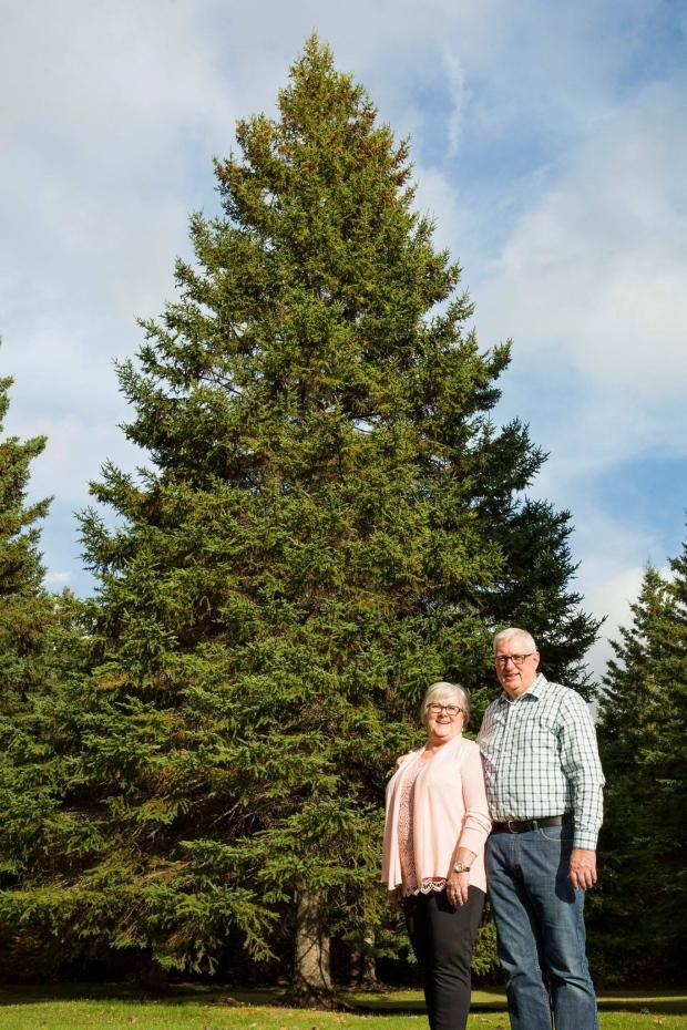 بوب وماريون كامبل أمام شجرة الميلاد التي يهديانها لمدينة بوسطن/Government of Nova Scotia