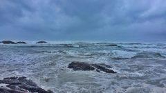 الشواطئ الغربية/تويتر