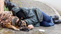 أحد المشردين في وينيبيغ يفترش الطريق وبجانبه كلبه/حقوق الصورة: iStock
