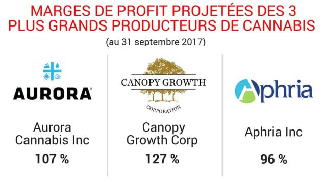 توقعات أرباح ثلاث أكبر شركات لإنتاج الماريجوانا/راديو كندا