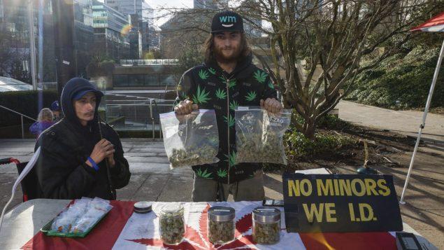 بائع يعرض الماريجوانا في فانكوفر دون رخصة وبصورة غير شرعية/راديو كندا