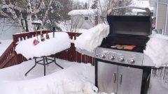 الثلوج تغطّي آلة البربيكويو وطاولة وسط حديقة أحد المنازل/SCOTT COOK/CP