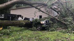 العواصف اقتلعت الأشجار التي هوت غصونها على أسطح المنازل ةالسيّارات المركونة في منطقة اوتاوي/Radio-Canada/Jérôme Bergeron