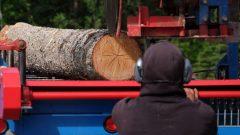 يأمل سكان فرت غود هوب حل أزمة السكن باستخدام أخشابهم/راديو كندا