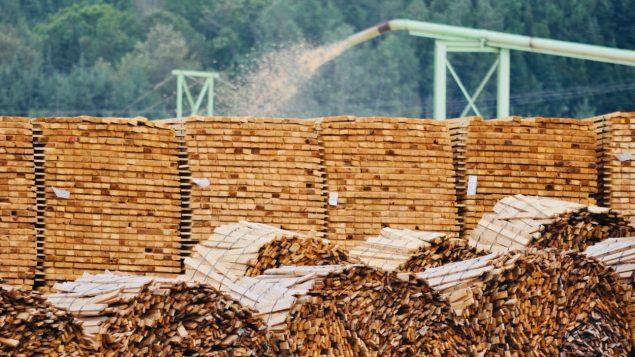 الرسوم الأميركية الجديدة على خشب البناء الكندي تتسبب بضرر على شركة إيرفينغ الكندية في نيوبرنزويك/راديو كندا