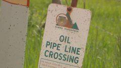 ترى الحكومة الكندية بأن قرار محكمة الاستئناف الفدرالية بالغاء مرسوم توسيع أنبوب ترانس ماونتن لنقل النفط لا يعني رفض المشروع عن آخره - CBC