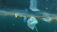 تعهّدت الدول الموقعة بإعادة تدويرواستعمال البلاستيك بنسبة لا تقل على 55% مع حلول العام 2030 و بنسبة 100% في 2040 - Rich Carey/Shutterstock