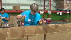 أظهرت دراسة أنّ 45 بالمئة منمّن استعانوا ببنوك الغذاء في ادمنتون عاطلون عن العمل منذ 3 سنوات على الأقلّ/CBC/هيئة الاذاعة الكنديّة