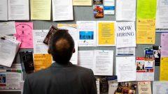 أكثر من 200 شركة من مناطق كيبيك ومن مونتريال تبحث عن عمال لمجابهة مشكل نقص العمالة الذي بلغ مستوى تاريخيا في كيبيك – - CBC