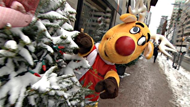 عمليّة الأنف الأحمر تقدّم خدماتها للسائقين سنويّا خلال فترة أعياد الميلاد ورأس السنة/ Radio-Canada