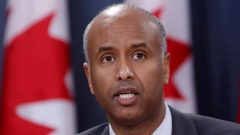 وزير الهجرة الكندي أحمد حسين - Fred Chartrand / CP
