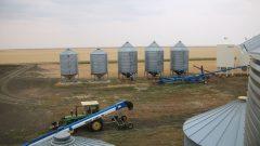 اتّحاد المنتجين الزراعيّين في سسكتشوان رحّب بتعزيز االاتّفاقات الزراعيّة بين كندا والصين/CBC/Olivia Stefanovich/هيئة الاذاعة الكنديّة