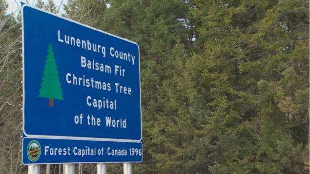 مدينة لوننبورغ في مقاطعة نوفا سكوشا عاصمة أشجار الميلاد في العالم كما ظهر في اللافتة/CBC/ هيئة الاذاعة الكنديّة