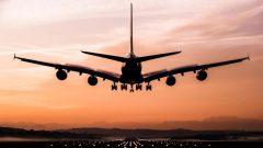 تستعمل 141 شركة طيران حول العالم نطام أماديوس للحجز - iStock