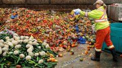 الغذاء الذي يتم التخلص منه دون داعٍ في كندا ينتج أكثر من 22 مليون طن من ثاني أكسيد الكربون ، وهو أحد مسببات التغير المناخ - CBC