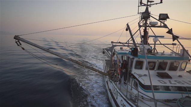 زورق صيد أسماك وثمار بحر (أرشيف) Radio-Canada