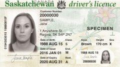 رخصة قيادة عير محددة الجندر - SGI