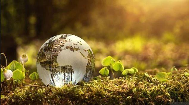 يُحتفل بيوم الأرض كلّ 22 أبريل نيسان منذ 1970 - iStock / Nastco
