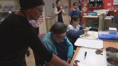 مصنع الشكولا في تروا ريفيير يوفّر التدريب لأشخاص يعانون من إعاقة ذهنيّة/ Radio-Canada