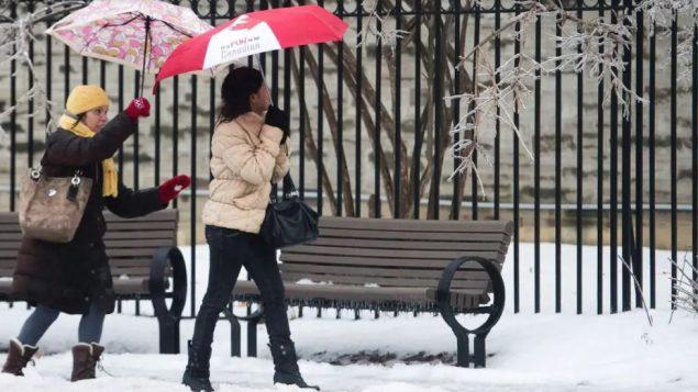 الأمطار الجليديّة تساقطت في عدد من مناطق شمال اونتاريو/CBC/هيئة الاذاعة الكنديّة
