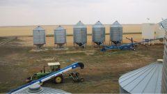 اتّحاد المنتجين الزراعيّين في سسكتشوان متخوّف من مضاعفات ضريبة الكربون على القطاع الزراعي/ CBC / Olivia Stefanovich/هيئة الاذاعة الكنديّة