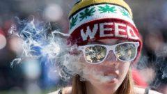 كان 68,6 % من الكنديين يؤيّدون تشريع الماريجوانا في عام 2017، و أصبحوا الآن 50,1 % ، وفقا للمسح - Justin Tang / The Canadian Press