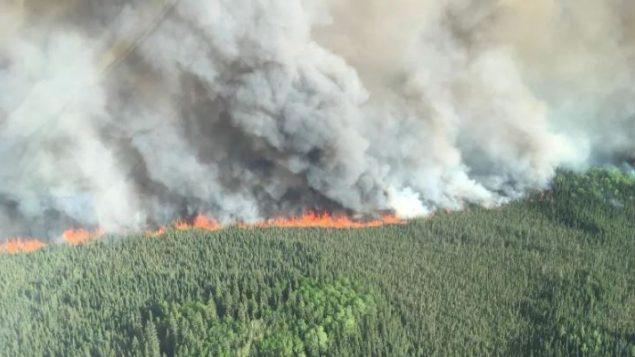 """""""عشرة أيام من الطقس الجاف يمكنها أن تتسبّب في حرائق مهولة""""، وفقا لباحث من المركز الكندي لمراقبة الغابات - Alberta Wildfire"""