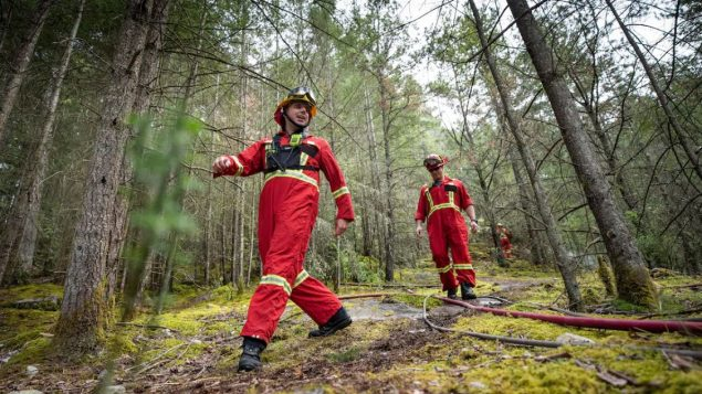 عناصر الاطفاء يشاركون في تمارين لمكافحة حرائق الغابات في بريتيش كولومبيا/ Radio-Canada / Ben Nelms