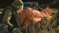 ظاهرة التشرّد تتنامى في ثلاث مدن في مقاطعة نيوبرنزويك / Radio-Canada