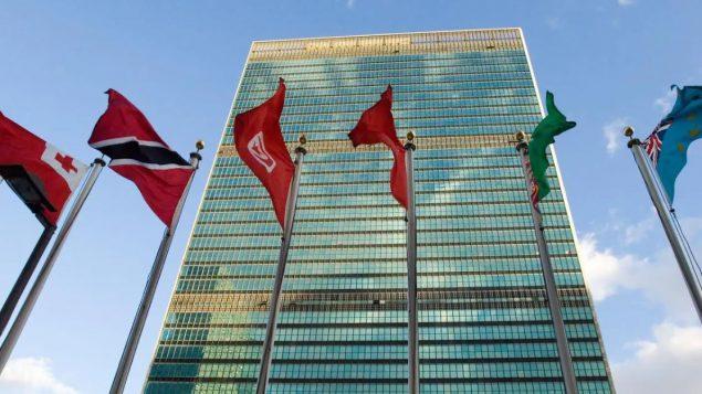 كندا تسعى للحصول على مقعد غير دائم في مجلس الأمن الدولي/ iStock