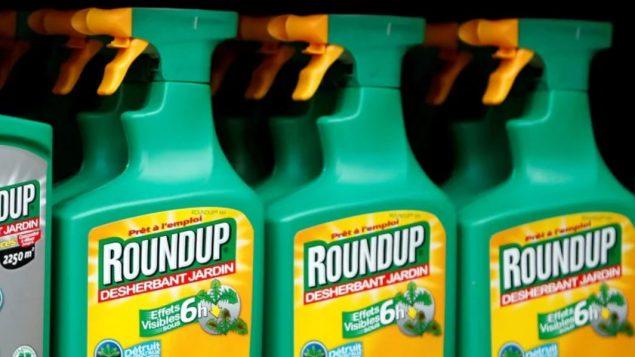 مبيد الأعشاب راوند أب أثار ملاحقات قضائيّة عديدة/ Reuters / Yves Herman