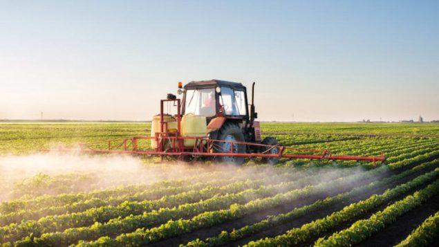 جرّار زراعي يرشّ المبيدات في حقل فول الصويا/iStock