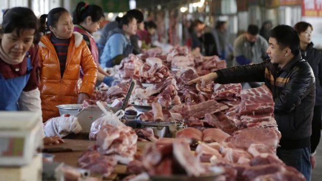 تدّعي الجمارك الصينية أنها اكتشفت مؤخرًا آثار لدواء الراكتوبامين في شحنات كندية من لحوم الخنزير. وهذا الدواء محظور في 160 دولة بما في ذلك الصين - Reuters / Jason Lee