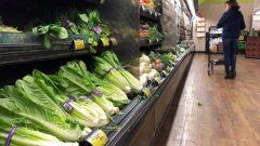 سجّلت أسعار الخضر والفواكه في نيوبرنزويك زيادة بنسبة 22,8٪، وهي الأكبر في كندا - .Mark J Terrill / Associated Press