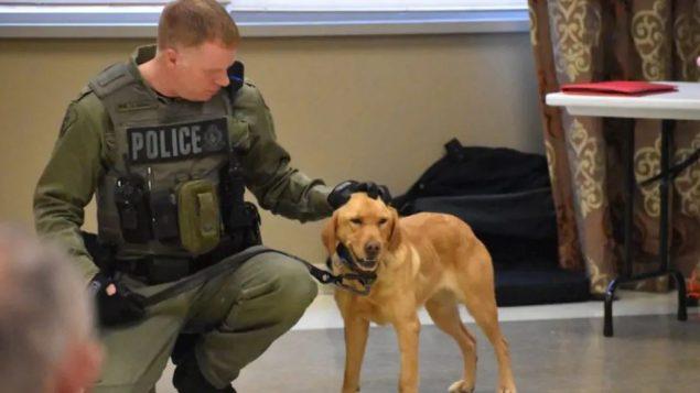 السيرجنت غانون برفقة الكلبة البوليسية زوي التي عثرت على فتاتين مفقودتين في حديقة ألغونكان/بيكتون غازيت حايسون باركس