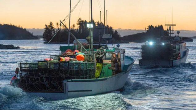 يؤدّي الصيد غير الشرعي إلى خسائر بمليارات الدولارات للاقتصاد العالمي/(Andrew VaughanCP
