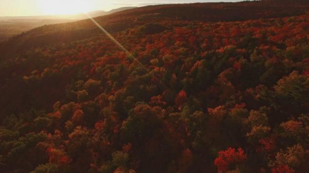 مشهد الخريف البهيج في كندا حين تستوطن الأشجار ألوان بهيّة لا نظير لها/CBC / ACQUISITION : CBC / RIVER ROAD FILM
