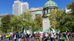 مظاهرة الأحد الـ32 للجالية الجزائرية في مونتريال في يوم 29 سبتمبر أيلول 2019، لدعم الحراك الشعبي في الجزائر - Photo : Samir Bendjafer