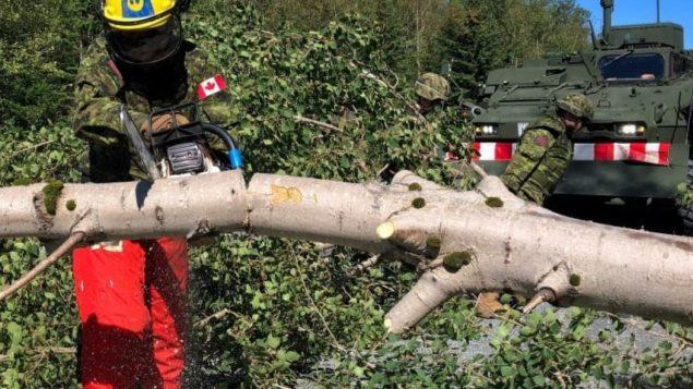 اعصار دوريان اقتلع الأشجار وتسبّب بانقطاع التيار الكهربائي عن مئات الىلاف من المشتركين في مقاطعات كندا الأطلسيّة/Brett Ruskin/CBC/هيئة الاذاعة الكنديّة