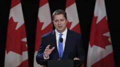 أندرو شير، زعيم حزب المحافطين الكندي - Adrian Wyld / The Canadian Press