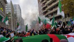 جزائريون يتظاهرون أمام مقر القنصلية العامة لبلدهم في مونتريال بمناسبة الذكرى الـ65 لاندلاع الثورة الجزائرية في الفاتح من نوفمبر تشرين الثاني 1954 ولدعم الحراك الشعبي في الجزائر في شهره التاسع- (02.11.2019) Photo : Samir Bendjafer