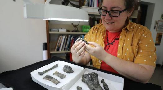 الباحثة فيكتوريا أربور، من المتحف الملكي في بريتيش كولومبيا في فيكتوريا - The Canadian Press / Brandy Yanchyk