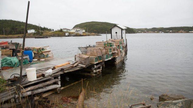 """بلغ عدد سكان قرية """"ليتل باي آيلاندز"""" 54 نسمة - Radio Canada / Isabelle Rochon"""