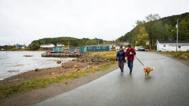 على الرغم من نقل المقيمين الدائمين ، لا يزال العشرات من السكان الموسميين الذين لديهم ممتلكات في الجزيرة يخططون للعودة كل صيف بمفردهم - Radio Canada / Isabelle Rochon