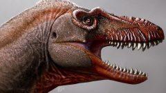 عاش ديناصور ثناتوثيرست قبل 79 مليون عام ، أي قبل زمن ديناصور T-Rex الشهير الذي يعود إلى حوالي 66 مليون سنة – Photo : Julius Csotonyi