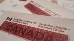 قد تختلف مدّة تمديد صلاحية تصريح العمل من عامل لآخر - Radio Canada / Alexandra Duval