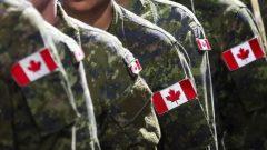 يمكن أن تُقدَّم المساعدة يمكن أن تُقدَّم عبر إلى الصليب الأحمر الكندي أوالقوات المسلحة الكندية أوالمتطوعين المتخصصين الذين سجلوا في وزارة الصحة الكندية - Jeff McIntosh / The Canadian Press